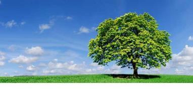 leeg_duurzaamheid